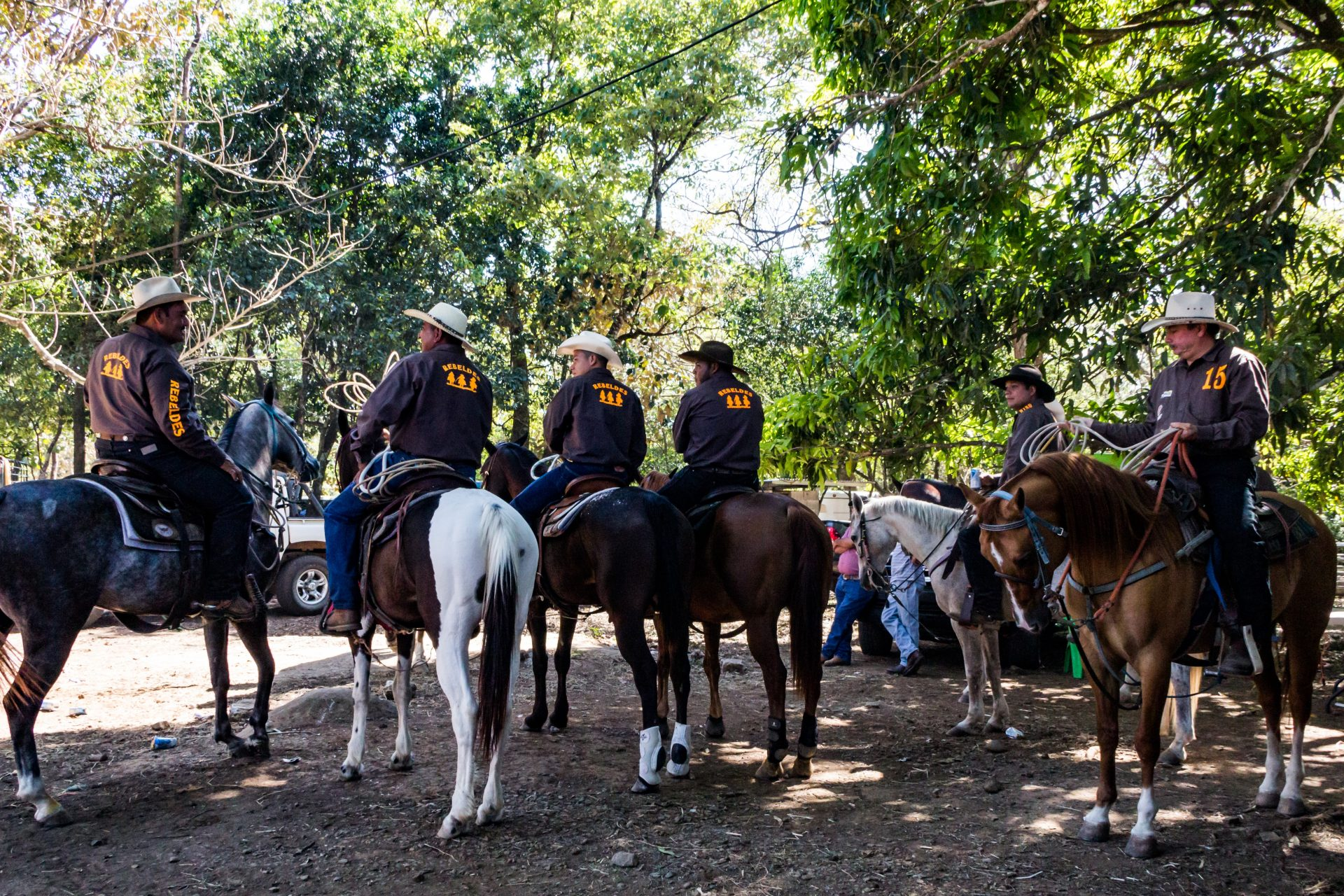 robbers cave stables horseback ride